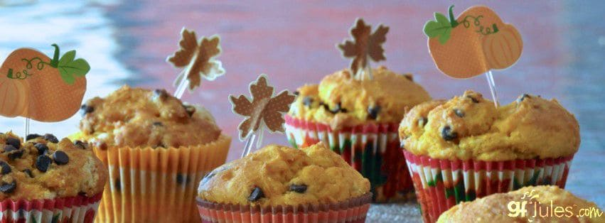 Gluten Free Pumpkin Muffins with Chocolate Chips